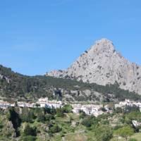 Walk through the delightful landscapes of the Sierra de Grazalema