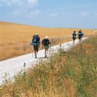 Pilgrims walking along the Camino in the Rioja region