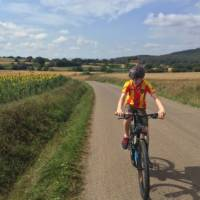 teenage boy cycling past sunflowers on a self guided cycle trip in Catalonia   Kate Baker