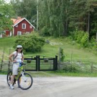 Cycling through countryside near Trosa, Sweden. | Joanna Adam