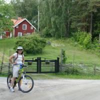 Cycling through countryside near Trosa, Sweden.   Joanna Adam