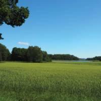 Verdant landscape across Häringe-Hammersta nature reserve | Kathy Kostos