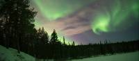 Swirling northern lights in Swedish Lapland | Ross Baker