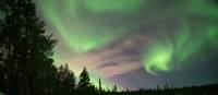 Swirling northern lights in Swedish Lapland |  <i>Ross Baker</i>