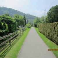 Tranquil Swiss cycling path | Gerard Tellam