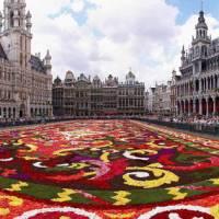 Brussels carpet display