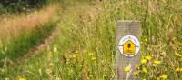 Waymarking on the Cotswold Way   Tom McShane