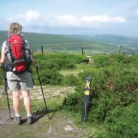 A hiker on the Wicklow Way