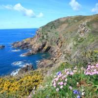 Spring on the Guernsey coastline   John Millen