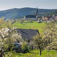 The charming countryside of France's Alsace | Charles Hawes