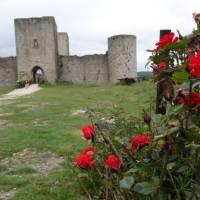 Exploring Chateau Puivert