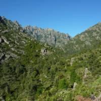 Views across the Tavignano Valley | David Holmes