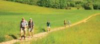 Walkers leaving Puycelci