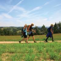 On the Pilgrims Trail