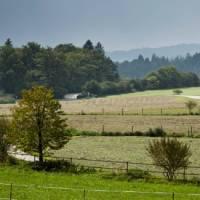 Walking through fields in Bavaria   Will Copestake
