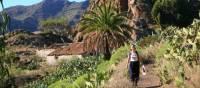 A hiker walking through Benchijigua in Gomera
