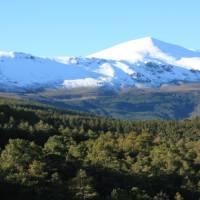 Sierra Nevada   David Ilsley