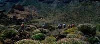 Walking in Mount Teide National Park