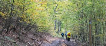 Breathtaking colours as we hike the Camino Trail | Scott Kirchner