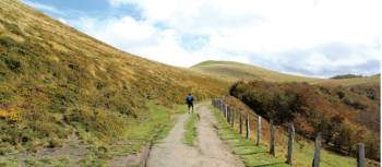Walking the stunning Camino Trail towards Roncesvalles | Scott Kirchner