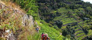 Hikers ascending to Volastra in the Cinque Terre | Phil Wyndham
