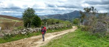 Hiker approaching O Cebreiro on the Camino Frances | Gesine Cheung