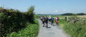 Guided walking on the Camino | Dana Garofani